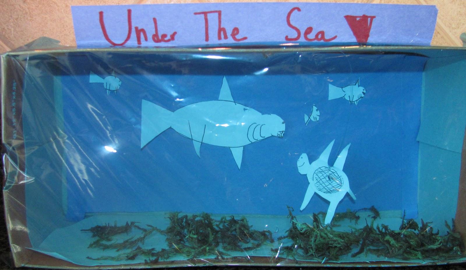 Ocean Ecosystem Diorama