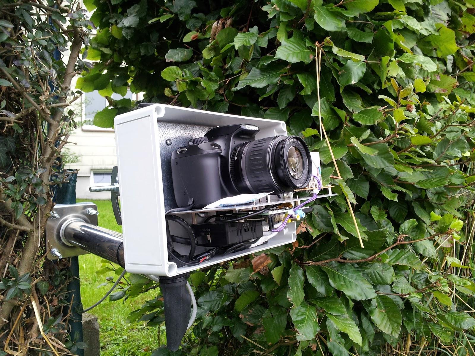Canon Dslr As Webcam