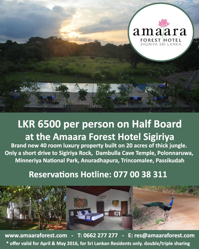 Situated deep in the forests that surround the giant monolith of Sigiriya, Amaara Forest is the newest hotel in the vicinity to open its doors. Amaara Forest, the second hotel in the Amaara Hotels portfolio has been in operation for four months and is a welcome oasis for travellers.