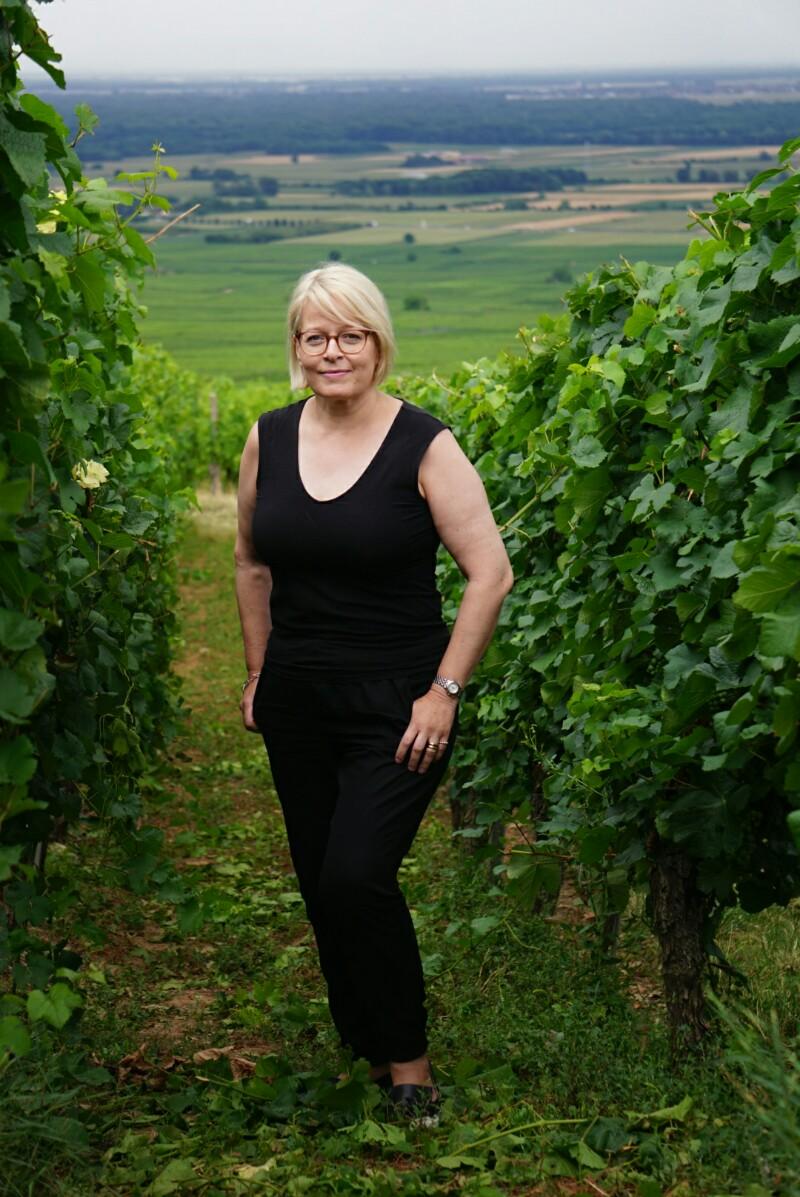 Alsace, lumo lifestyle, viiniviljelmä