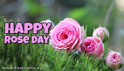 Rose Day Images by Fast2SMS