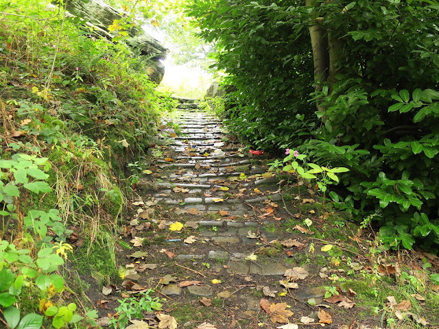 Steep, stone brick path with huge rock; nettles, ferns and trees beside.