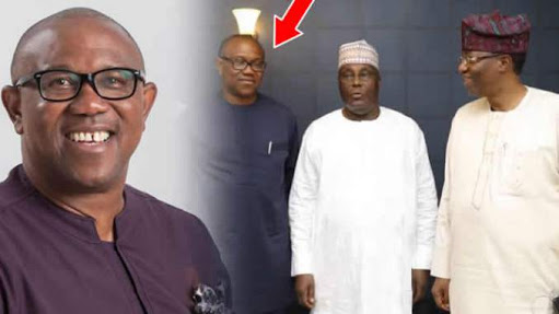 We'll Support PDP in 2019 Because of Peter Obi - Ndigbo Youths assure Atiku