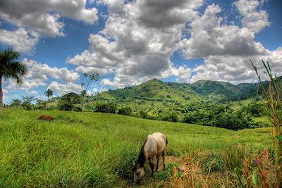 Paysage République Dominicaine avec sa région montagneuse et verdoyante.