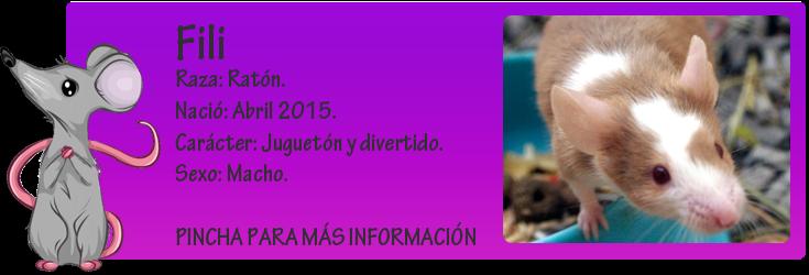 http://almaexoticos.blogspot.com.es/2015/06/fili-ratoncito-que-habria-sido-alimento.html