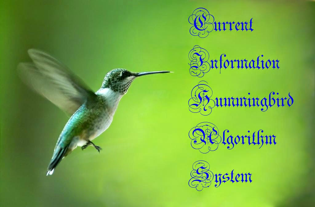 Hummingbird Google Information