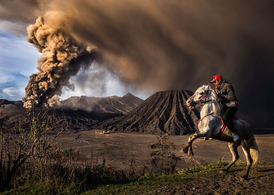 These Are The 35 Best Pictures Of 2016 National Geographic Traveler Photo Contest - On Guard, Indonesia