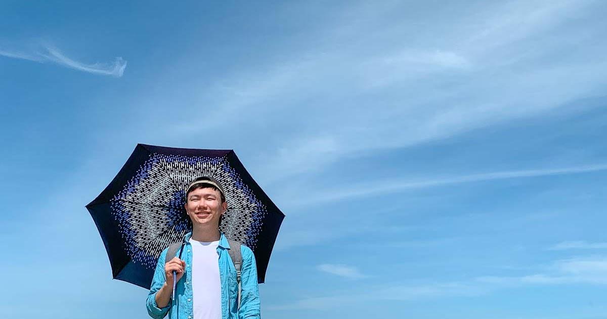 台灣時尚傘 didyda 滴滴答 安全不回彈自動傘  無段式收傘省力輕鬆又安全 獨特傘面圖樣展現個人風格 - 出發吧! 沃爾夫.