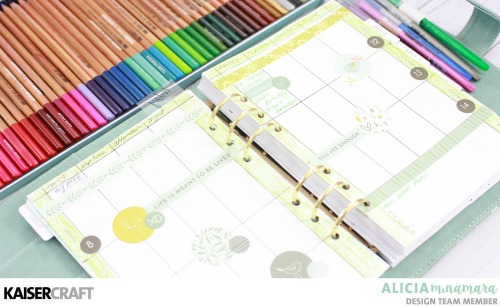 Kaisercraft Chirp Planner Set-Up By Alicia McNamara