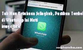 Cara Mengatasi,Biar Tidak  Mau Ketahuan Selingkuh, Pastikan Tombol di WhatsApp Ini Mati image_title 1