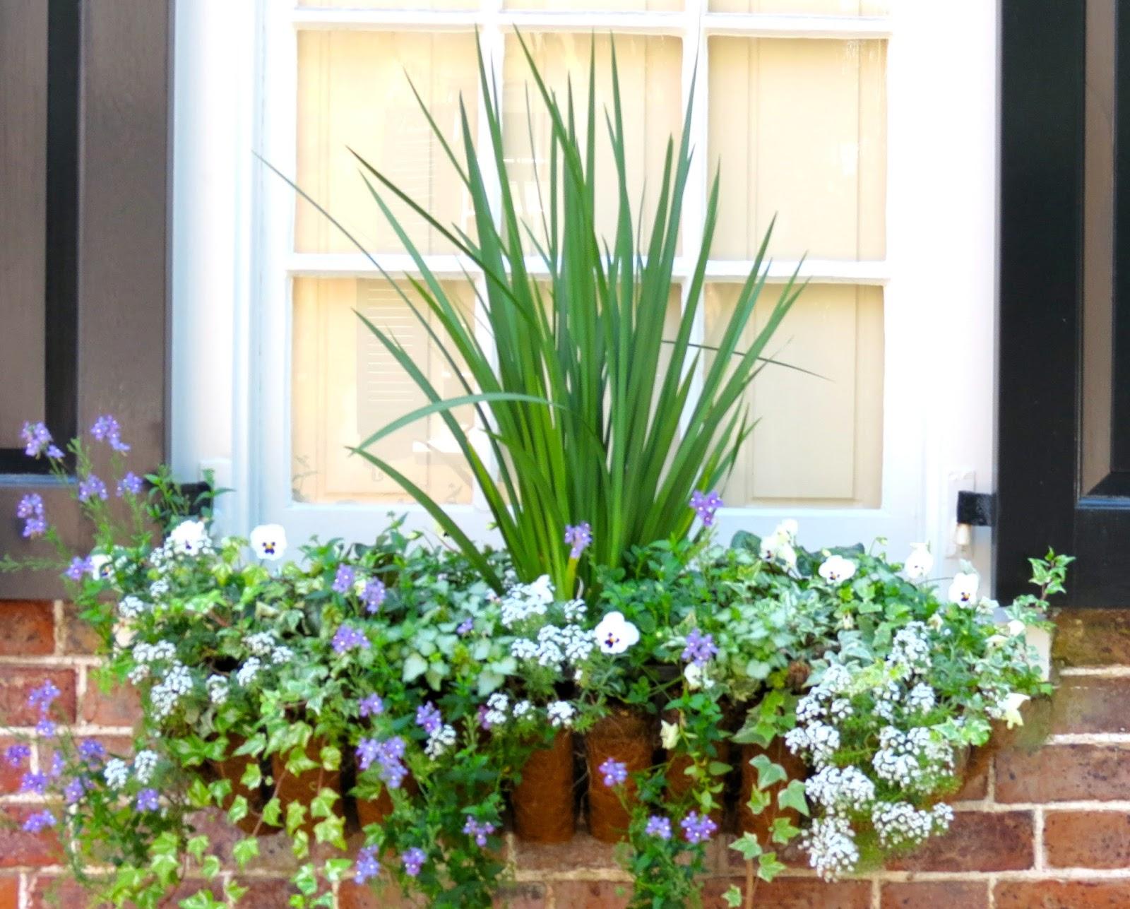 JLL DESIGN Window Box Ideas & More Garden Inspirations