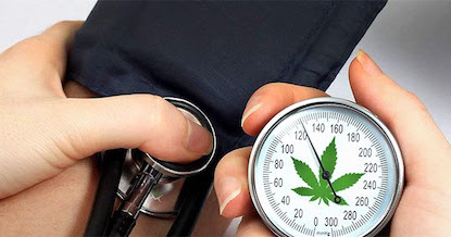 Study Proves CBD Reduces Blood Pressure