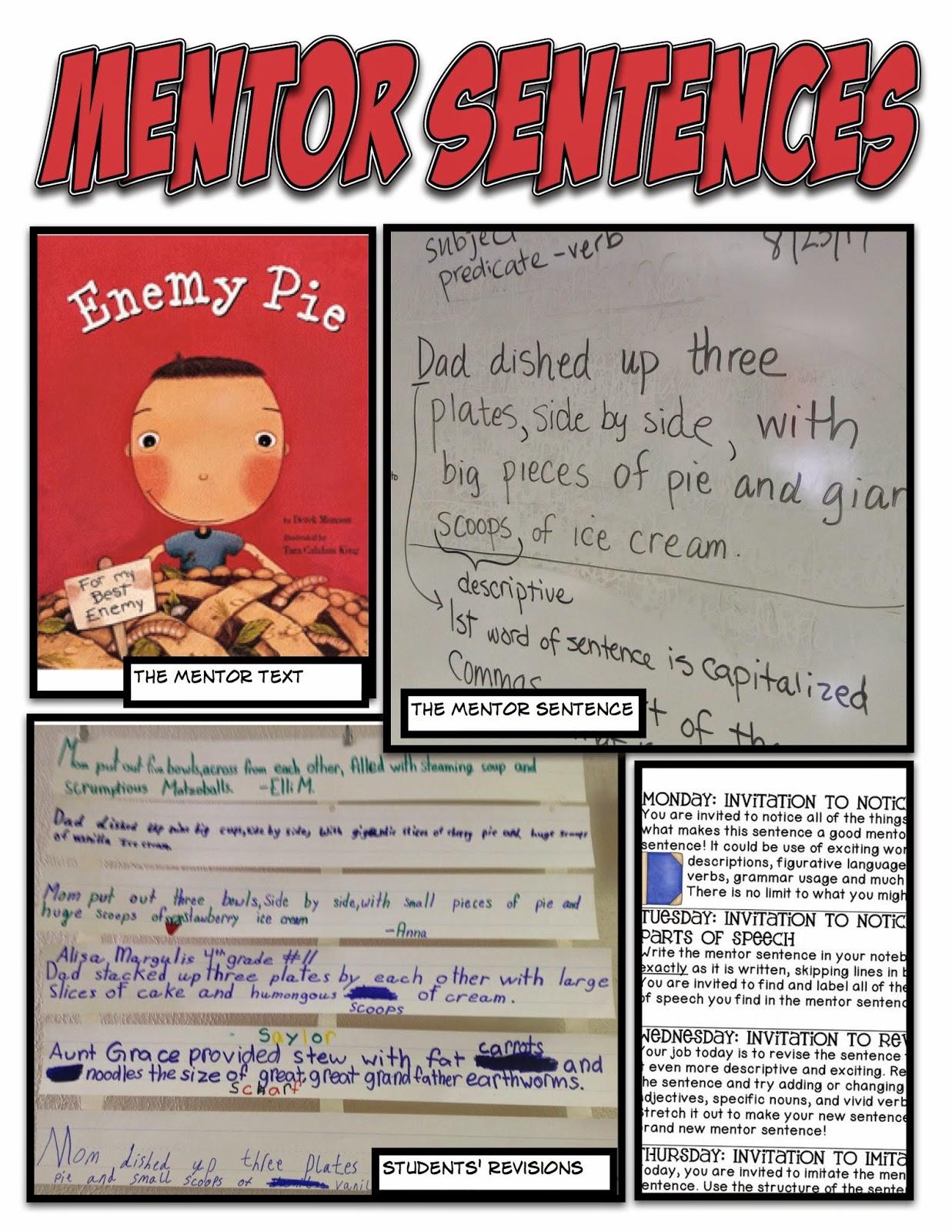Mentor Sentences Sentences And Student