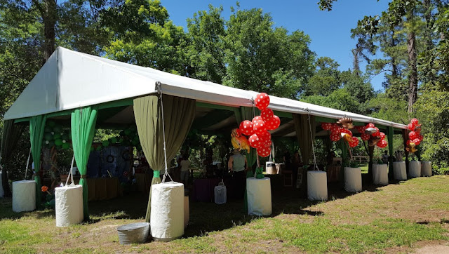Affordable Wedding Venues In Houston houston arboretum and nature center