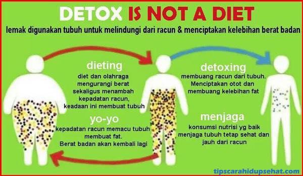 detoks-lebih-mudah-dari-diet