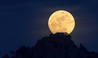 http://www.express.co.uk/news/nature/642465/Picture-prove-man-on-the-moon-nature-science-proof