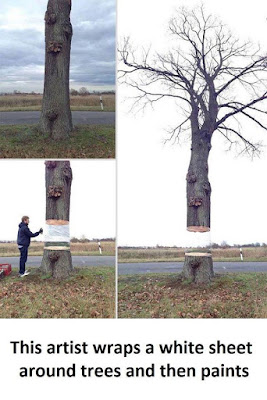 Unique Tree Art