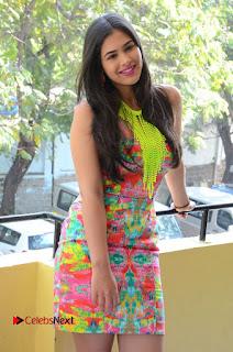 Telugu Actress Prasanna Stills in Short Dress at Inkenti Nuvve Cheppu Press Meet Stills  0046.JPG