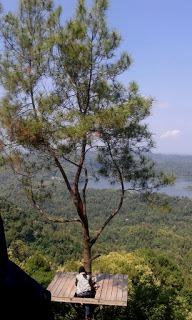 Jalan-Jalan Menikmati Cakrawala di Kalibiru