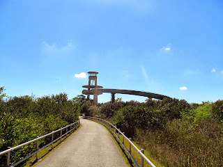 Observation Tower at Shark Valley