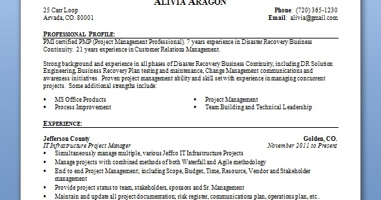 chronological software engineer curriculum vitae format in