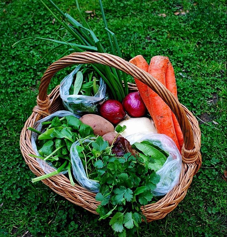 zakupy, marnowanie jedzenia, wyrzucanie jedzenia, marcin dorocinski, punkt krytyczny rewolucja zywieniowa, efekt cieplarniany, punkt krytyczny, rewolucja zywieniowa, lokalna zywnosc, ekologiczna zywnsc, ekologia, slad weglowy, eko, sezonowa zywnosc,,wwf, zycie od kuchni
