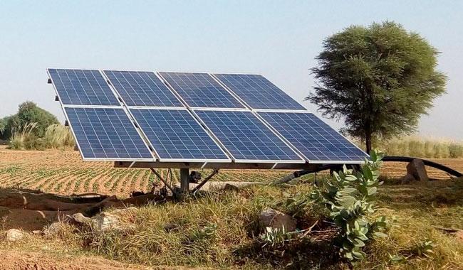 A Sunlight Energy Brasil, abre suas portas em setembro no Ceará
