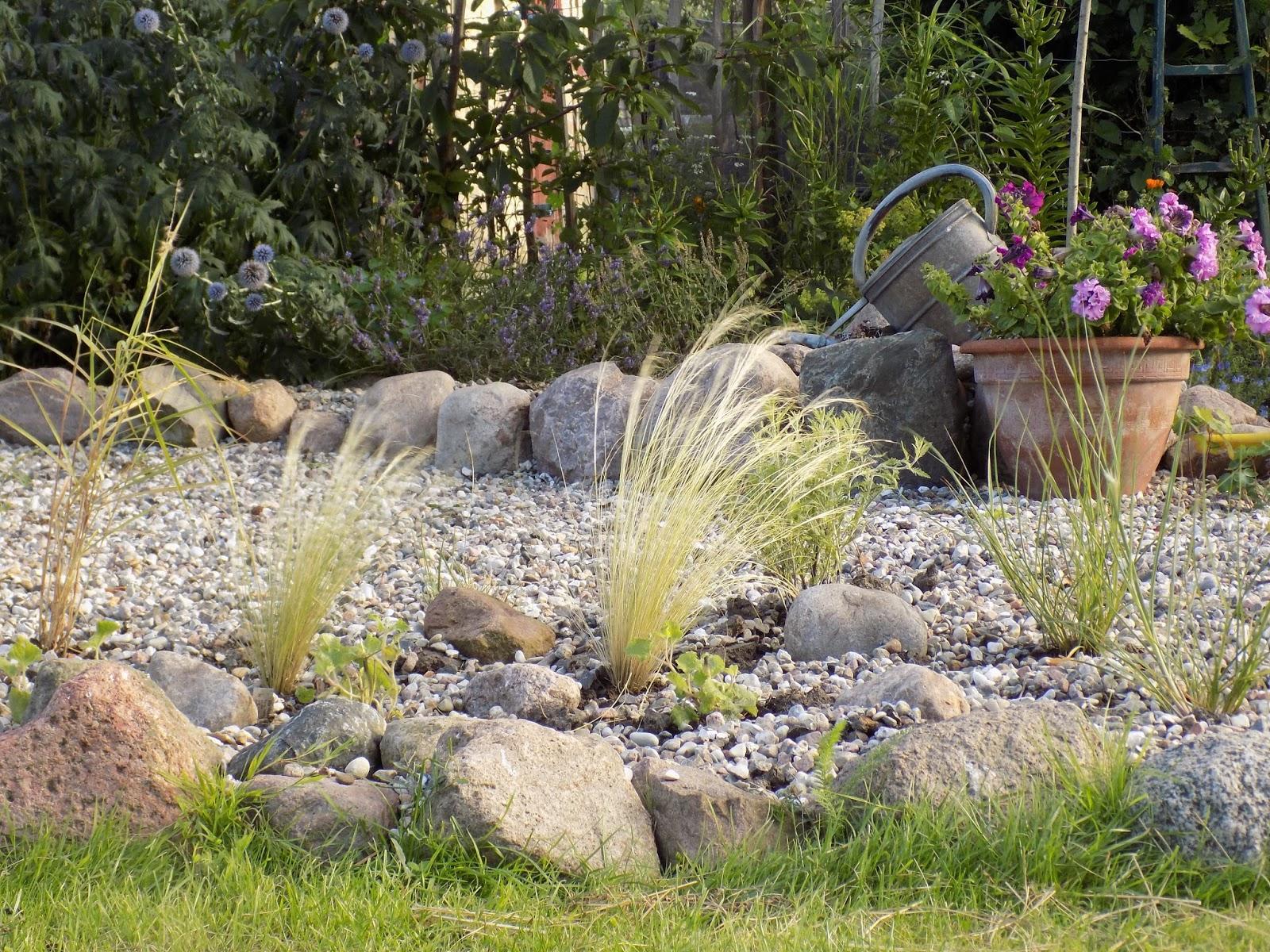Die Schönsten Gräser Für Den Garten garten gräser gestalten die schönsten einrichtungsideen