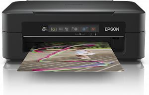 Epson Expression Home XP-255 Driver Free Download