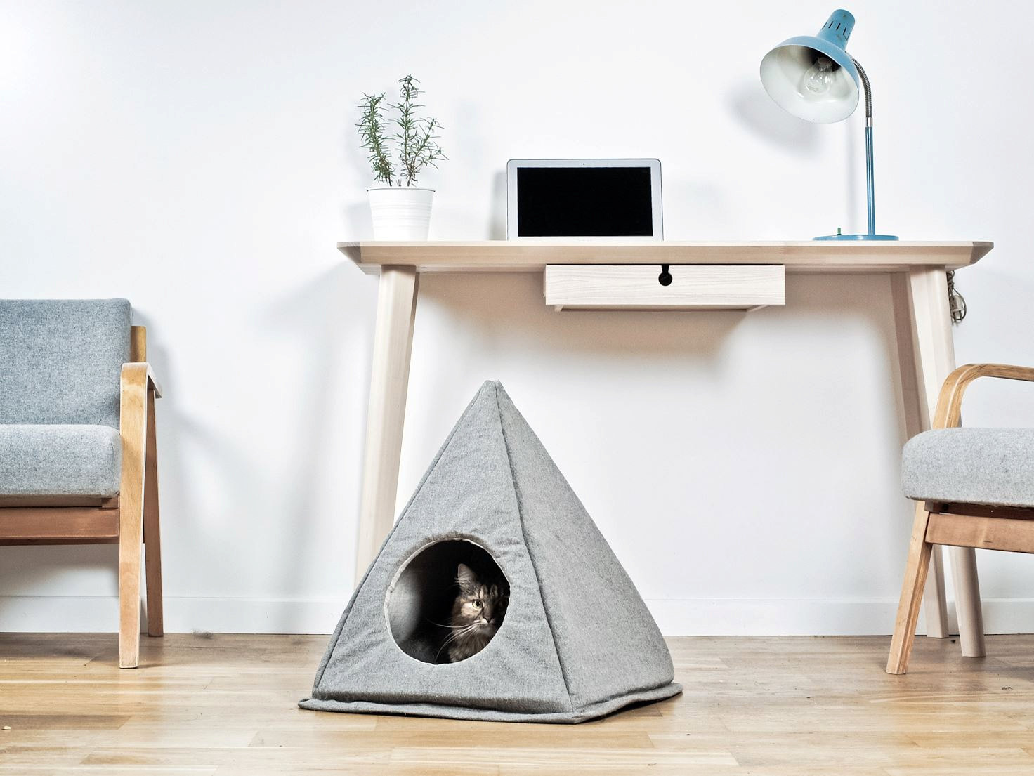 Image Result For Cozy Cat Furniture Canada