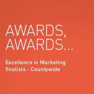 Finalists Excellence in Marketing at the Countywide Essex Business Awards 2016 - Laban Brown Design