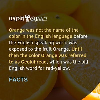 English Facts: Orange was not the name of the color in the English language before the English speaking world was exposed to the fruit Orange.  Until then the color Orange was referred to as Geoluhread, which was the old English word for red-yellow.