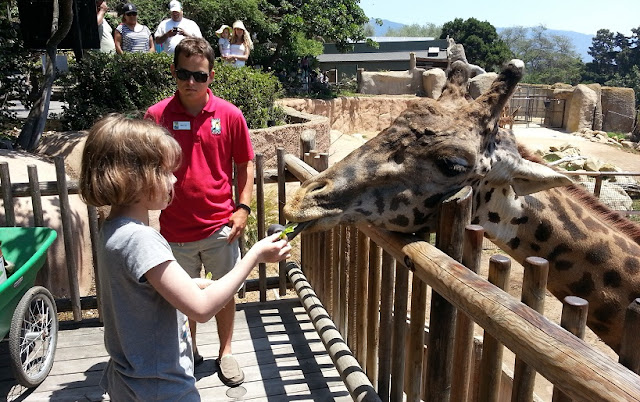 O que ver/fazer no Santa Bárbara Zoo