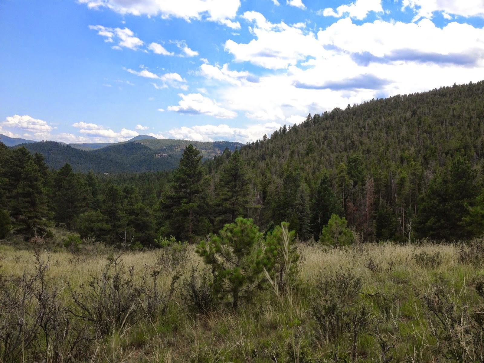 Go Hike Colorado Evergreen Mountain Aldefer Three