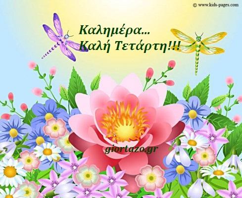 Καλημέρα, όμορφη Τετάρτη σε όλες και όλους