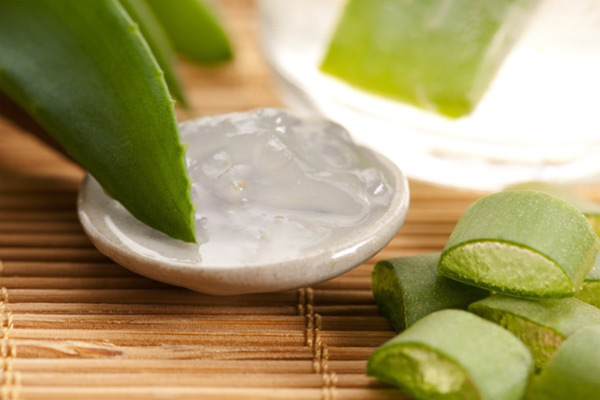 effects of aloe vera in the Aloin-free aloe vera juice is not associated with any known side effects maintaining safety because the laxative effects of natural aloe vera juice can be exceedingly harsh, consumers should avoid making aloe juice at home and instead purchase aloin-free varieties.