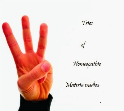 Trios in Homeopathic Materia Medica