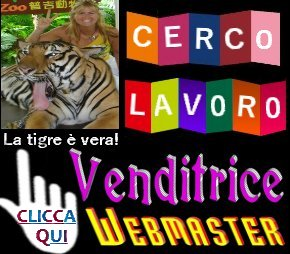 http://frasidivertenti7.blogspot.it/p/cerco-lavoro.html
