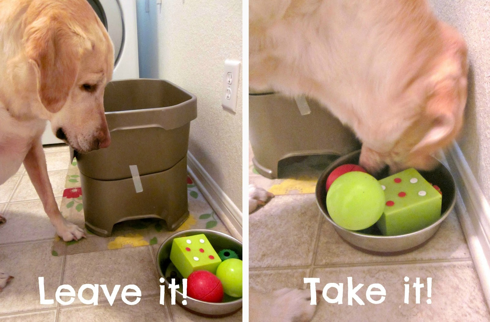The only toy that she ever removes from her bowl is the red one because  sometimes it holds kibble. We've tried the Kibble Nibble and the Tug-A-Jug.