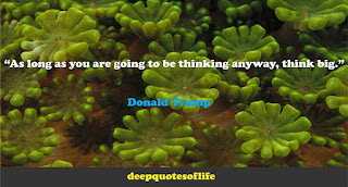 """As long as you are going to be thinking anyway, think big.""  ― Donald Trump"