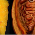 2 Ingredients to Empty All Deposits of Fat and Parasites From Your Body Without Effort!
