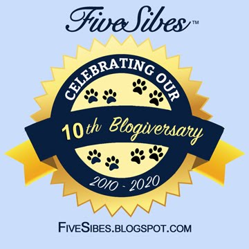 Celebrating 10 Years of Dog Blogging!