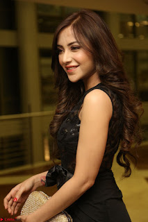 Angela Krislinzki in Transparent Black Gown at Rogue Movie Teaser Launch 1st March 2017 080.JPG