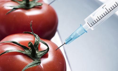chất bảo quản gây hại cho sức khỏe con người