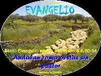 Resultado de imagen para En aquel tiempo, los apóstoles volvieron a reunirse con Jesús y le contaron todo lo que habían hecho y enseñado.