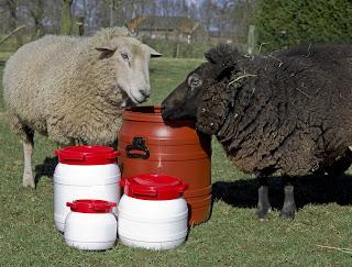 Futtertonnen für Schafe
