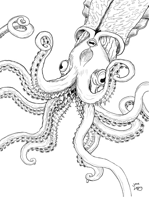 Jake LaGory- illustrator: Cryptozoology Coloring Book- Kraken
