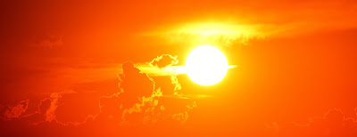 भगवान सूर्य की पूजा में प्रयोग होने वाले पुष्प
