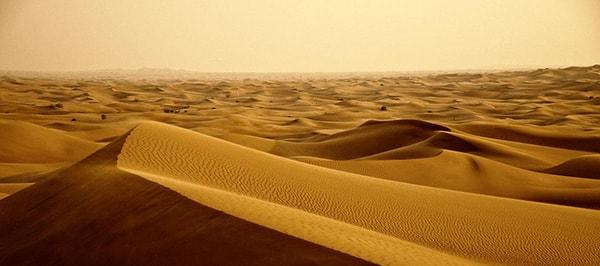 Заповедник пустыни