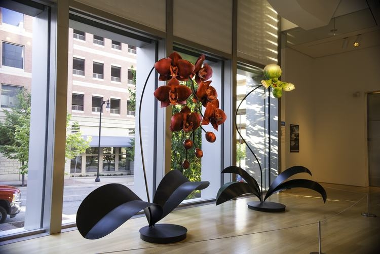 14-Jason-Gamrath-Giant-Glass-Orchids-and-other-Flowers-Sculptures-www-designstack-co